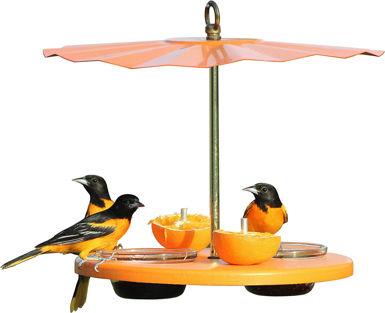 Kettle Moraine Super Oriole Recycled Orange Fruit, Jelly, Mealworm Bird Feeder w/Orange Roof