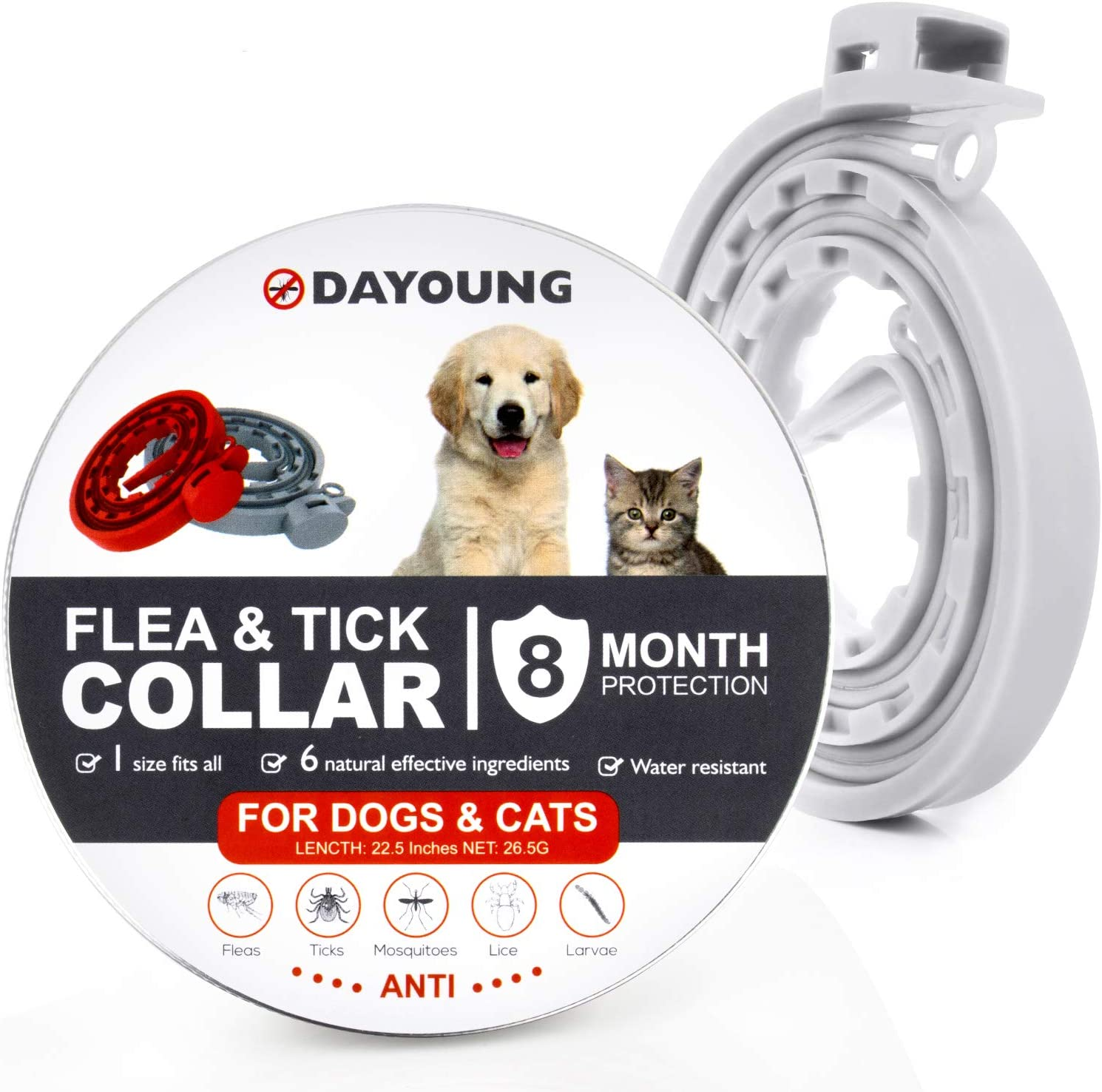Fenvella Flea And Tick Collar 8 Month Protection Adjustable Waterproof Collar For Dog Puppy Kitten Cats Natural Safe Efficiently Repell Locust Lice Of Pets Grey Amazon Co Uk Pet Supplies