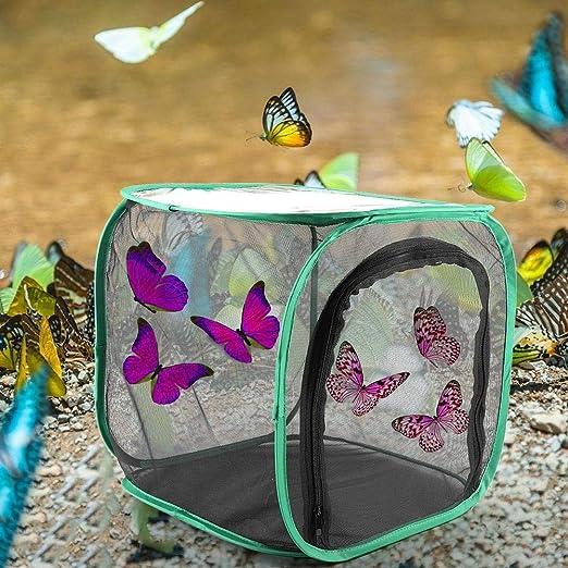30 x 30 x 30 cm Reptilien K/äfer W/ürmer Spinnen tragbarer K/äfig f/ür Schmetterlinge und Insekten mit K/äfig f/ür Schmetterlinge Mumusuki Faltbarer