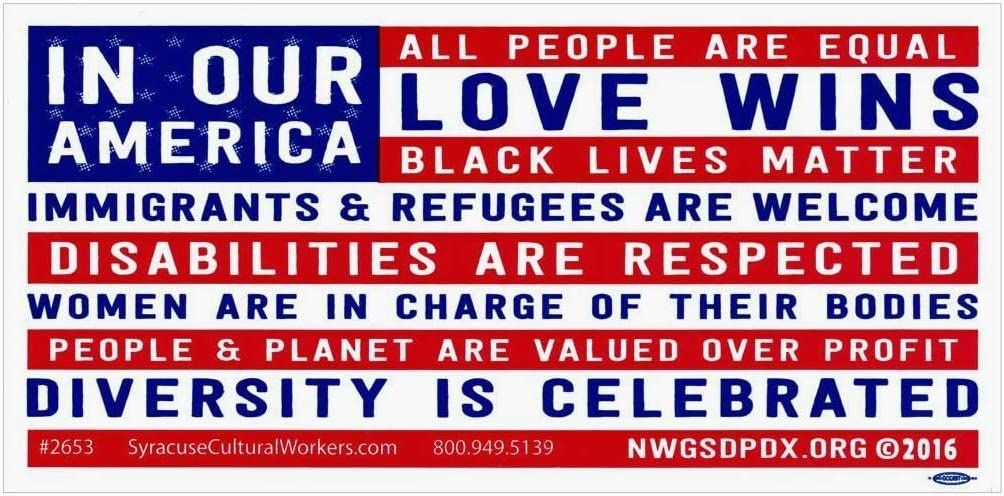 in Our America Black Lives Matter and Love Wins Diversity Bumper Sticker Car Decal 7.75-by-3.75 Inches