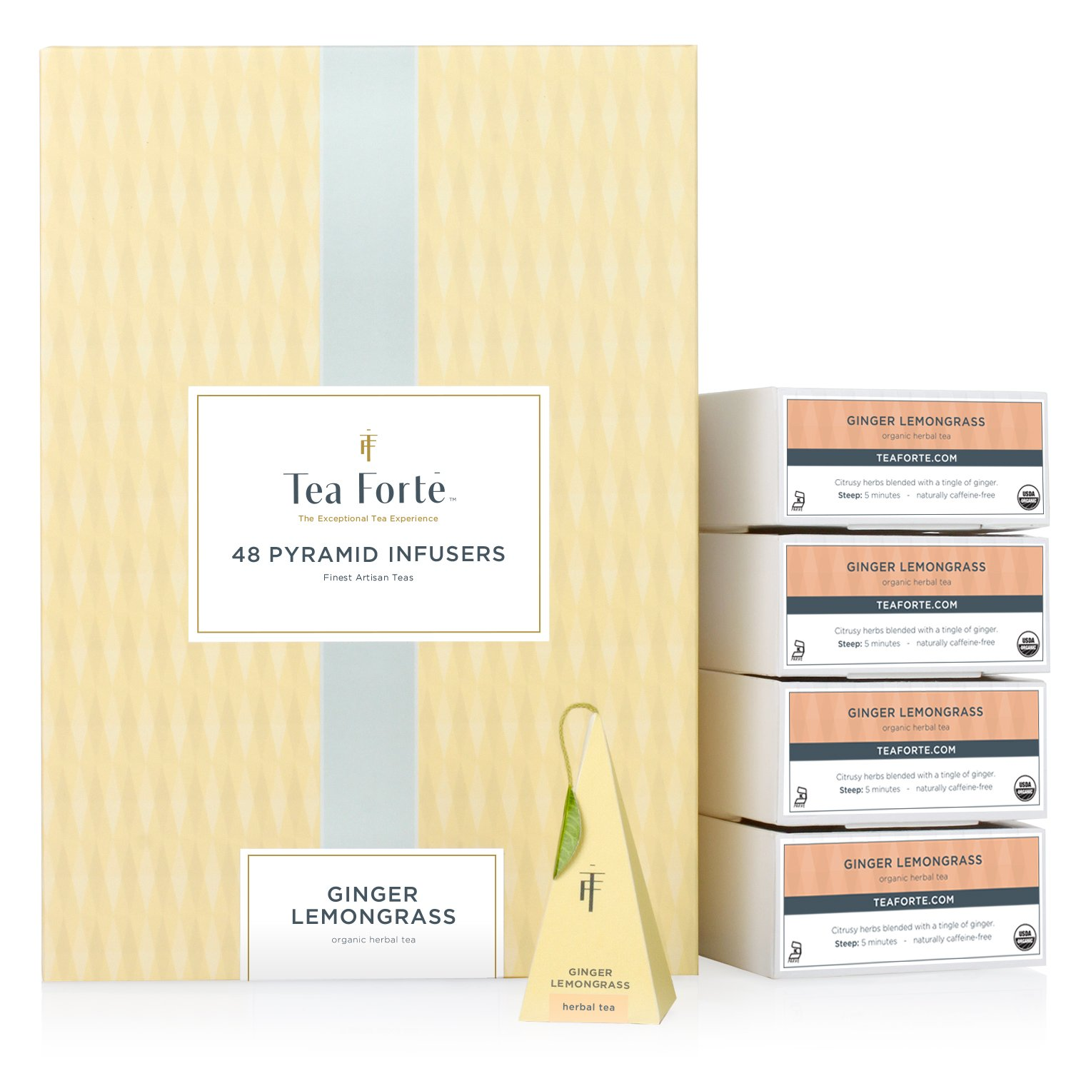 Tea Forte Ginger Lemongrass EVENT BOX Bulk Pack, 48 Handcrafted Herbal Tea Pyramid Infuser Bags by Tea Forte