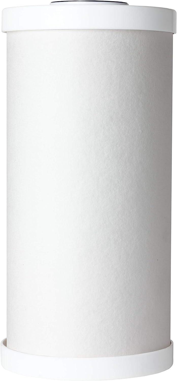 AO Smith AO-WH-PREL-RC 10 X 4.5 Carbon Block Filter