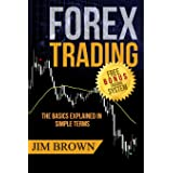 FOREX TRADING: The Basics Explained in Simple Terms (Forex, Forex for Beginners, Make Money Online, Currency Trading, Foreign
