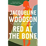 Red at the Bone: A Novel