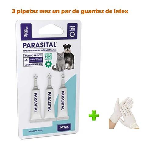 Kanxeto Pipetas Perros y Gatos hasta 10 kg. (+ 1 par de Guantes de látex), 3 pipetas antiparasitos 100% Naturales PARASITAL, Perros pequeños, Especial ...