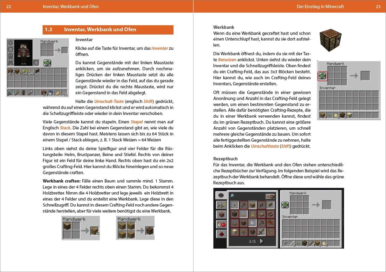 BIOMIA - Das Handbuch für deine Minecraft Welt: Amazon.de: Andreas ...