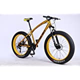 MYTNN fatbike 26 Pulgadas 21 velocidades Shimano Fat Tyre Mountain Bike Oro 47 cm RH Snow Bike Fat Bike
