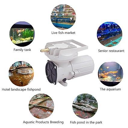 Amazon com : HEALiNK DC 12V 38LPM/Min 602GPH 18W Aquarium Air Pumps