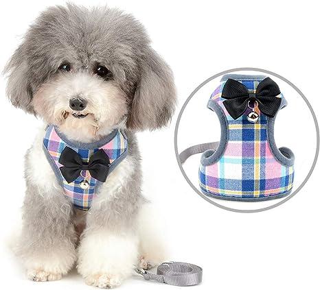 Zunea - Juego de arnés y correa para perros pequeños y ajustables ...