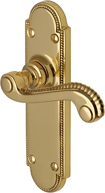 Amazon.com: Adam Euro Profile Door Handle in Polished Brass (Set ...