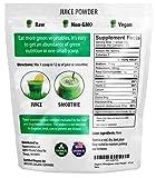 Organic Wheatgrass Juice Powder - Grown in