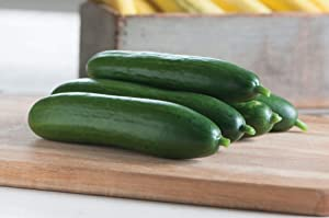 David's Garden Seeds Cucumber Slicing Diva SL2198 (Green) 50 Non-GMO, Open Pollinated Seeds