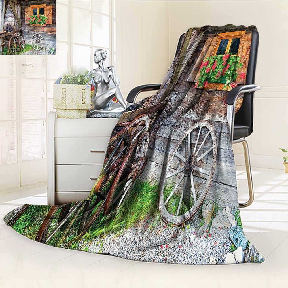 YOYI-HOME Unique Custom Duplex Printed Blanket Window with Flowers in Pot Wheels Farmhouse Rural Scene Front View Brown Green Anti-Static,2 Ply Thick,Hypoallergenic/W69 x H47