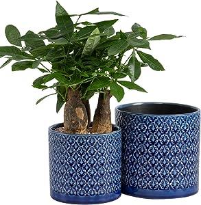 KYY Ceramic Planters Garden Flower Pots 6.5