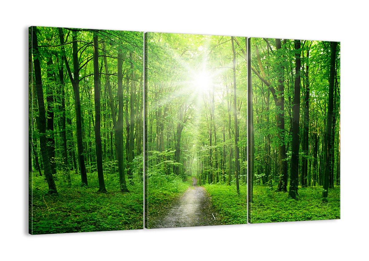 Bild auf Leinwand - Leinwandbilder - drei Teile - Breite  165cm, Höhe  110cm - Bildnummer 2689 - dreiteilig - mehrteilig - zum Aufhängen bereit - Bilder - Kunstdruck - CE165x110-2689