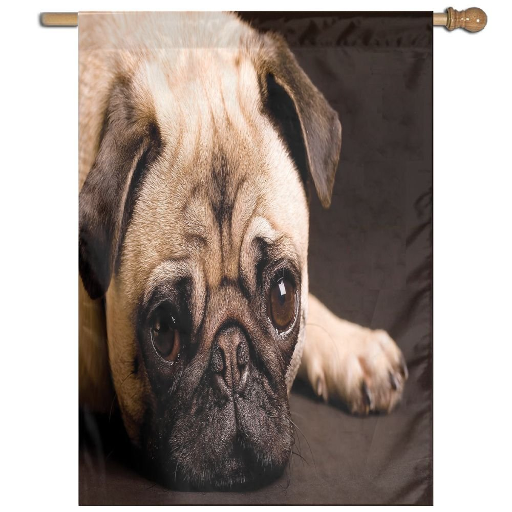 HUANGLING Cute Photograph Of A Pug With Its Little Paws Pure Bred Dog Image Animal Fun Decorative Home Flag Garden Flag Demonstrations Flag Family Party Flag Match Flag 27''x37''
