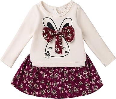 iiniim Vestidos Niña Algodón Manga Larga Bebé Niña Ropa Otoño Conejo Traje Mini Tutú Princesa para Bebes Niñas 0-3 Años: Amazon.es: Ropa y accesorios
