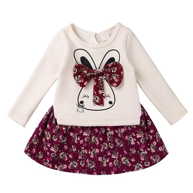 YiZYiF Ropa De Niñas Bebé 2 PCS Conjuntos Top Camiseta Manga Larga con  Conejito y Falda roja para niña 12M-6Años  Amazon.es  Ropa y accesorios 12402c72dcf