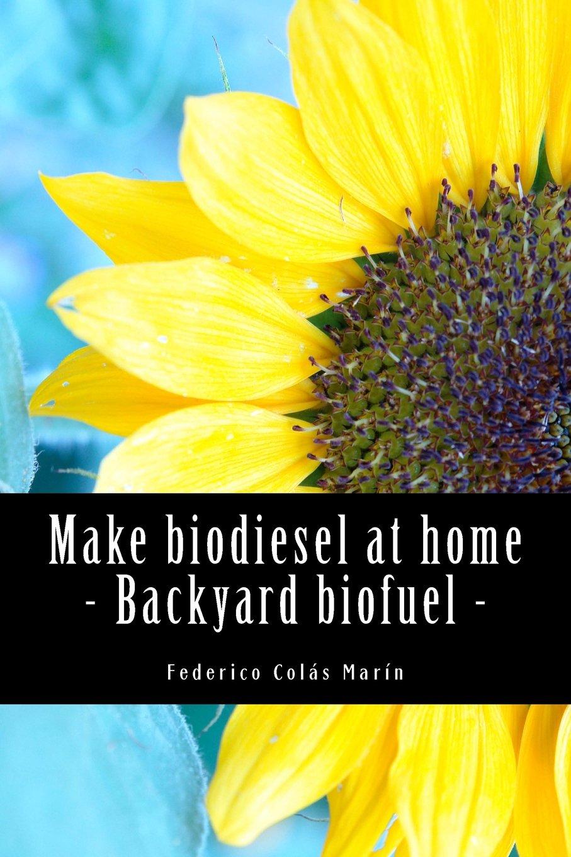 make biodiesel at home backyard biofuel federico j colás marín