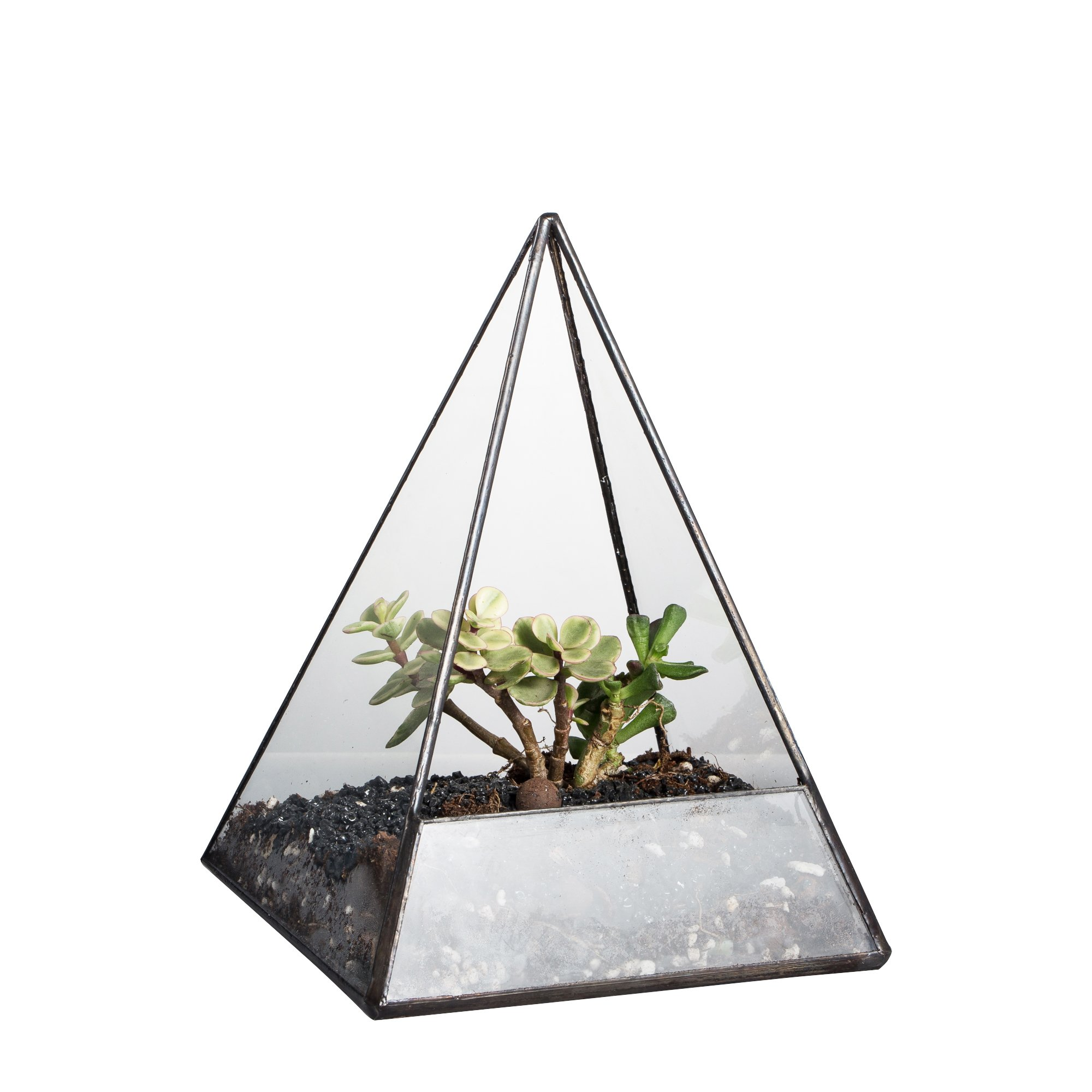 NCYP Modern Handmade Pyramid Glass Geometric Terrarium Tabletop Decor Flower Pot for Moss Fern Succulent Air Plant Balcony Display Planter Vase Container Black 7.4inch Height