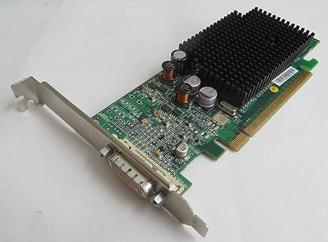 Dell Radeon X600 Pro 256 MB PCI-E DDR Tarjeta gráfica de ...