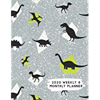 2020 Weekly & Monthly Planner: Grey Dinosaur Themed Calendar & Journal