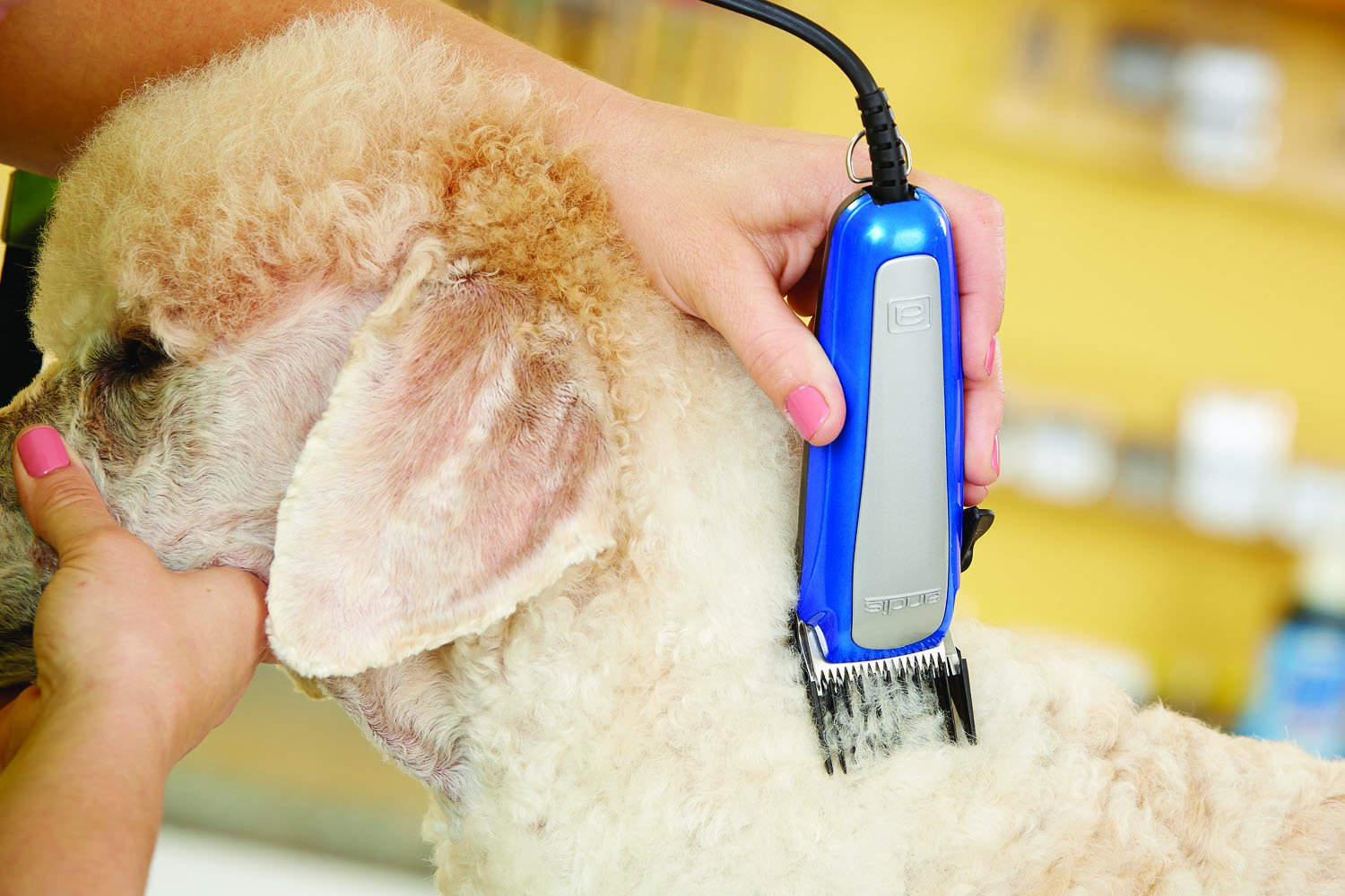 Andis EasyClip Ultra Adjustable Blade Clipper Kit, Pet Grooming, RACA (60165) by Andis