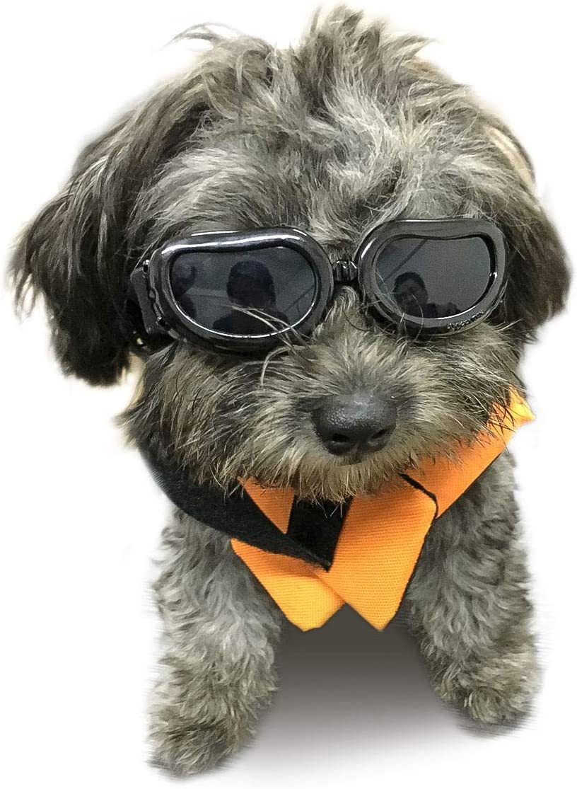 Namsan Pet Goggles Gafas de sol para perros Impermeables a Prueba de Viento Puppy Goggles Anti-niebla Protección UV Gafas de sol para Gatos y perros Pequeños