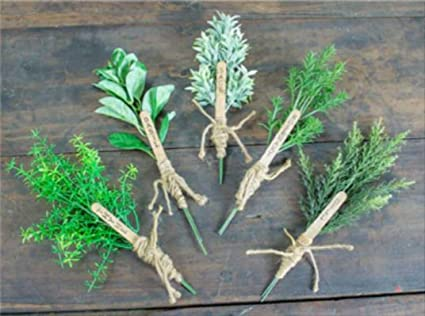 Amazon com: Honey and Me Herb Labeled Thyme Rosemary Basil