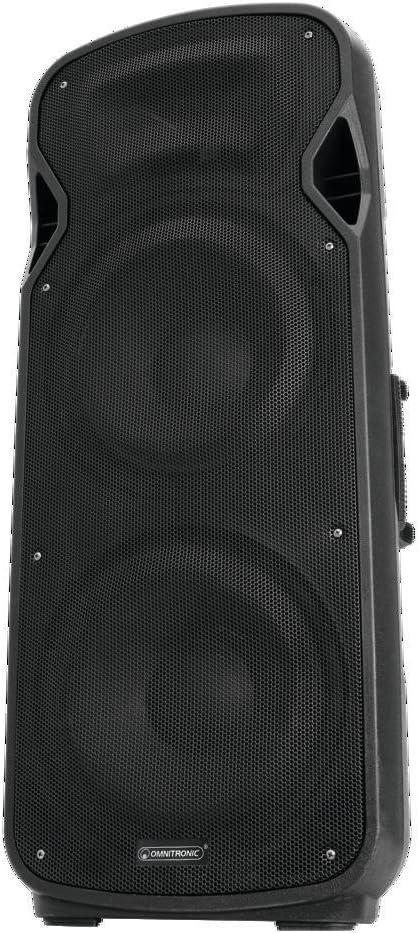 OMNITRONIC VFM-2212 2-Way Speaker