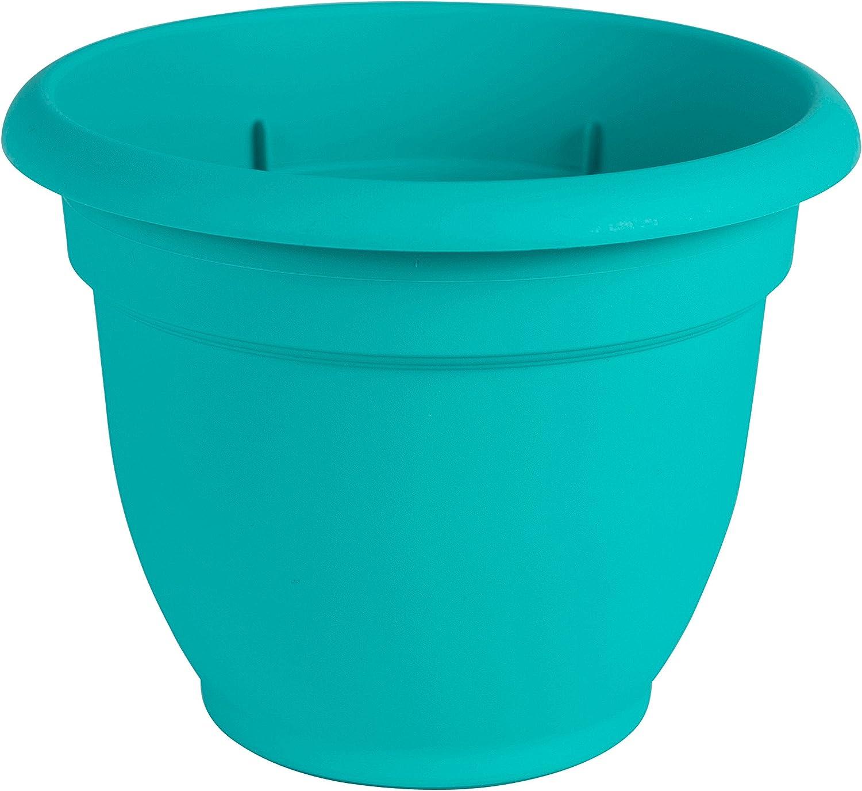 """Bloem Ariana Self Watering Planter, 6"""", Calypso (AP0627), 6-Inch,"""