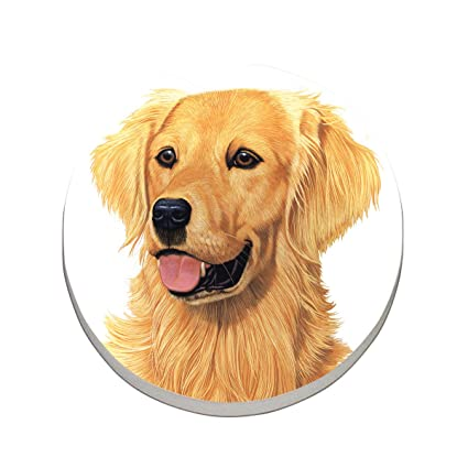 CounterArt Absorbent Stoneware Car Coaster, Golden Retriever