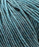 Cascade Yarns - Cascade 220 Superwash Yarn #1910 Summer Sky Heather