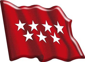 Artimagen Pegatina Bandera Ondeante Comunidad de Madrid Resina 66x48 mm.: Amazon.es: Coche y moto
