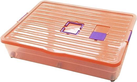 BG Spazio - Caja bajo Cama de 64 litros: Amazon.es: Hogar