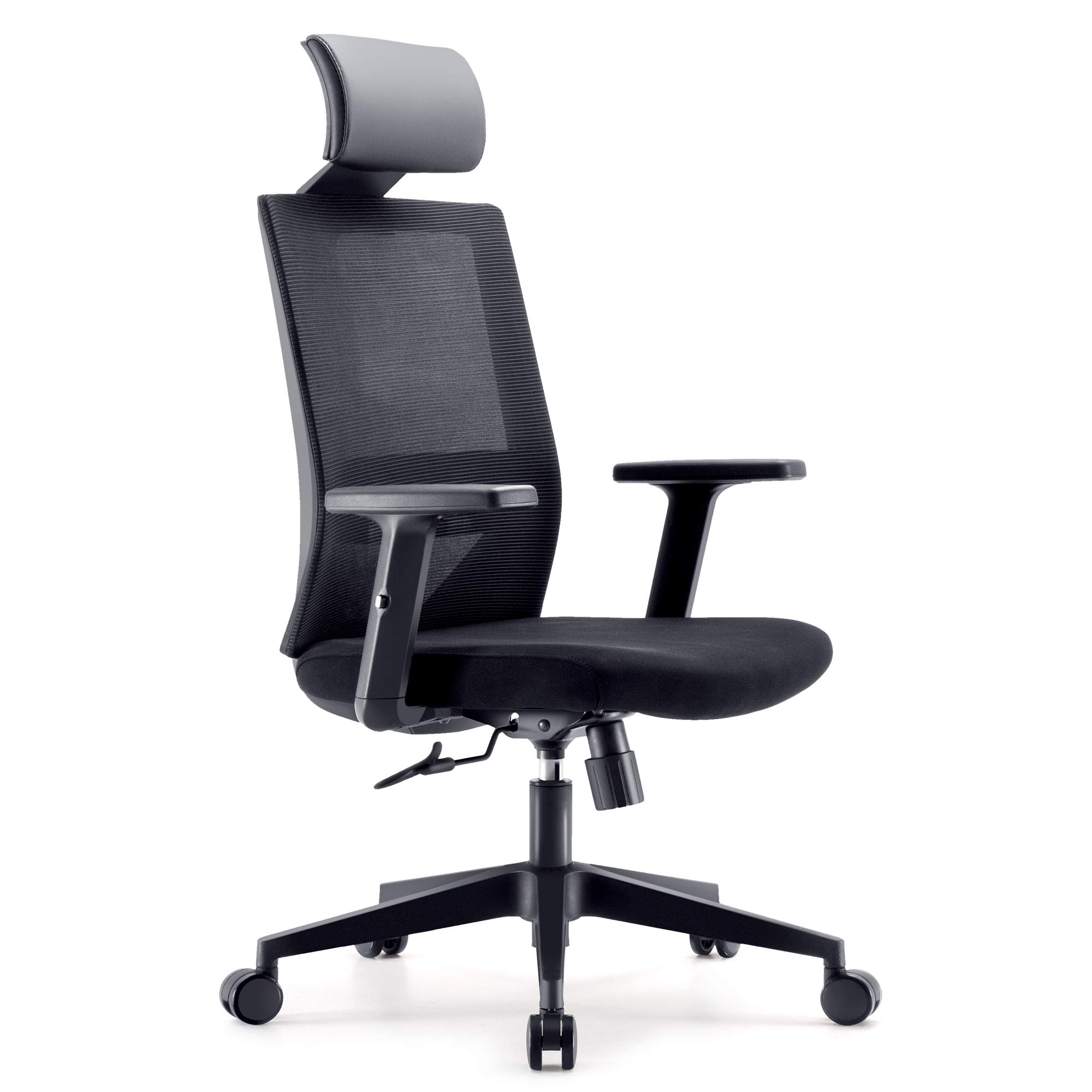 SIHOO M72-M101 Ergonomics Office Computer Desk Chair, Adjustable Headrests Chair Backrest and Armrest's Mesh Chair (Black)
