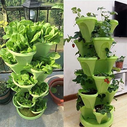 Amazon.com & Amazon.com : Sunsun99 6 Tier Stackable Strawberry Herb ...