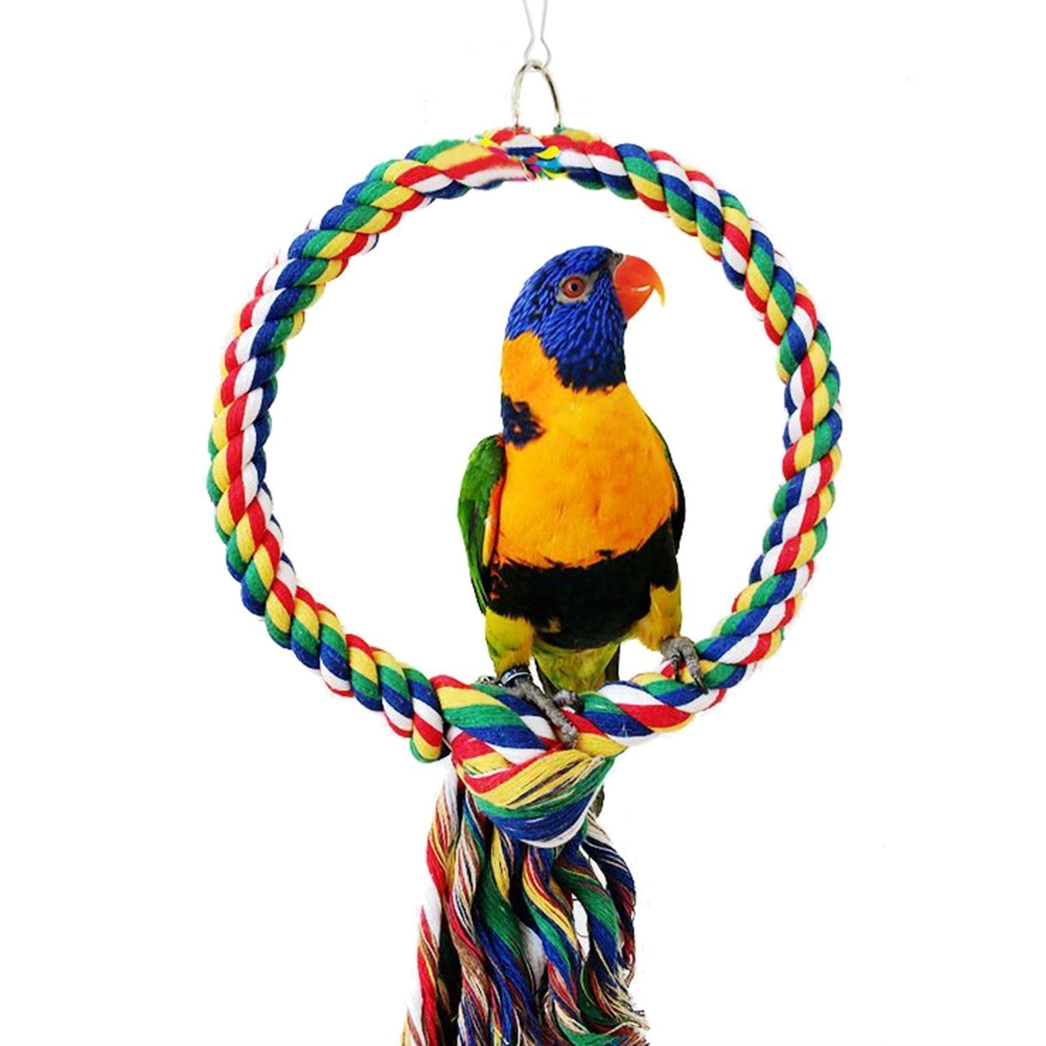 RYPET Bird Swing - Wooden Conure Toys Bird Cage Hammock Swing Hanging Toy for Small Parakeets Cockatiels, Conures, Macaws, Parrots, Love Birds, Finches(2 Packs) by RYPET (Image #3)