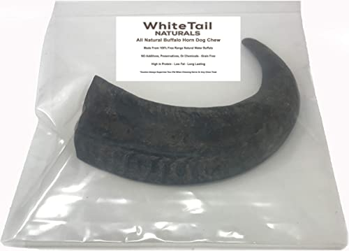 White-Tail-Naturals-Huge-Water-Buffalo-Bully-Horn-(1Pack)-(XXXL,-XXL-and-Extra-Large)-Giant-All-Natural-Dog-Chew-and-Training-Treat