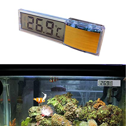 Buy Aquarium Fish Tank Thermometers
