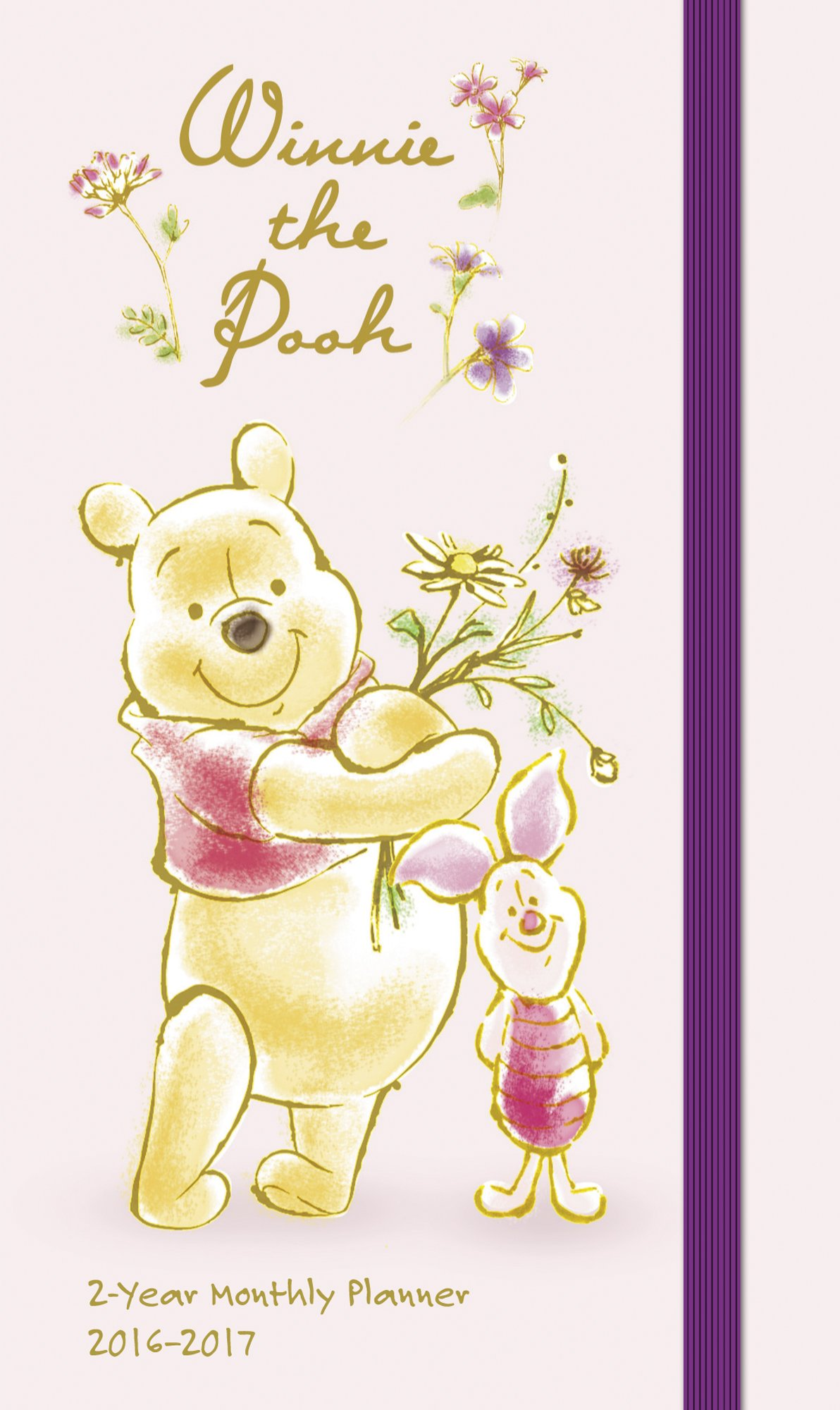 Winnie the Pooh Pocket Planner 2 Year (2016) Calendar – Engagement Calendar, June 17, 2014 Day Dream 162905299X Non-Classifiable