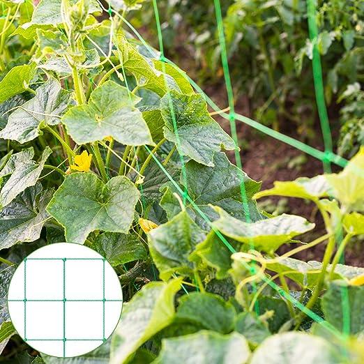 Malla de celosía para plantas trepadoras, color verde: Amazon.es ...