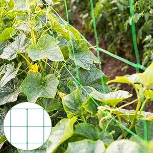 Malla de celosía para plantas trepadoras, color verde: Amazon.es: Jardín
