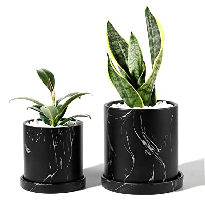 POTEY Ceramic Flower Plants Pots Planter - 3.8 Inch + 5.1 Inch Marble Container Drainage with Saucer Indoor Herb Garden Bonsai Planting - Set of 2, Black : Garden & Outdoor