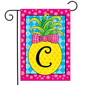 "Briarwood Lane Pineapple Monogram Letter C Garden Flag Everyday 12.5"" x 18"""