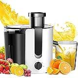 Aigostar Grape 30JDA – Licuadora para frutas y verduras, 400 W, motor de dos velocidades, jarra de 500 ml, cuchillas y filtro de acero inoxidable de tipo 304. Libre de BPA. Color blanco y negro. Diseño exclusivo.