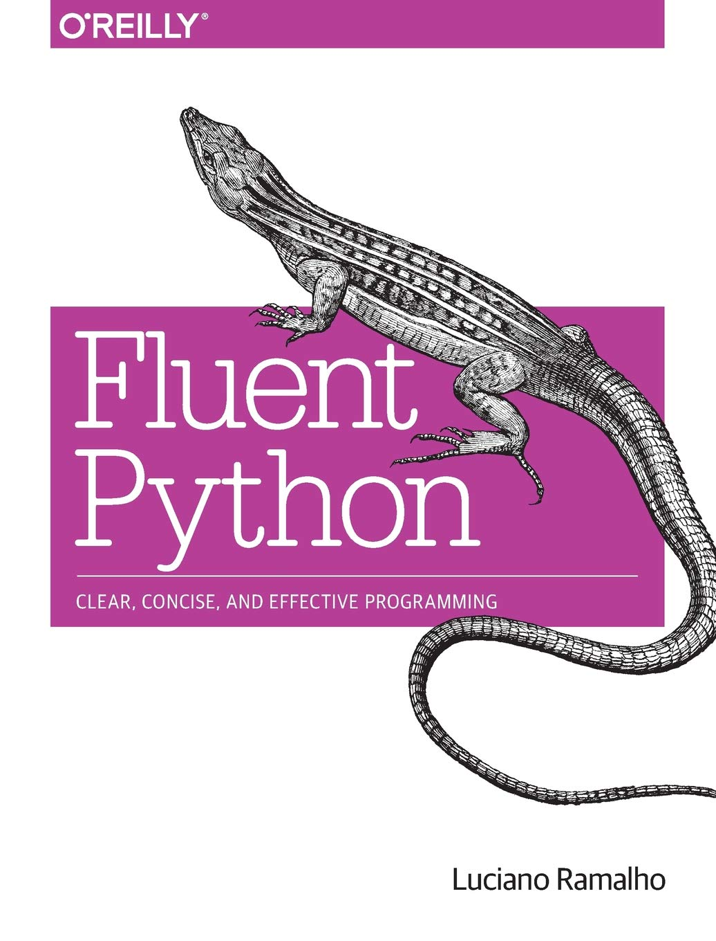 Fluent Python: Clear, Concise, and Effective Programming by O Reilly Media