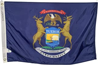 product image for 3x5' State of Michigan Flag - All Weather Nylon & Reinforced Fly End Stitching - Made in USA