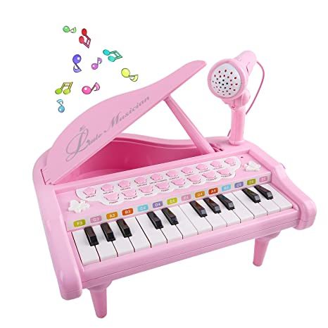 Amazon.com: Mini Piano for 1 2 3 4 Year Old Girls, 24 Key Grand ...