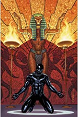Black Panther Book 4: Avengers of the New World Book 1 Paperback